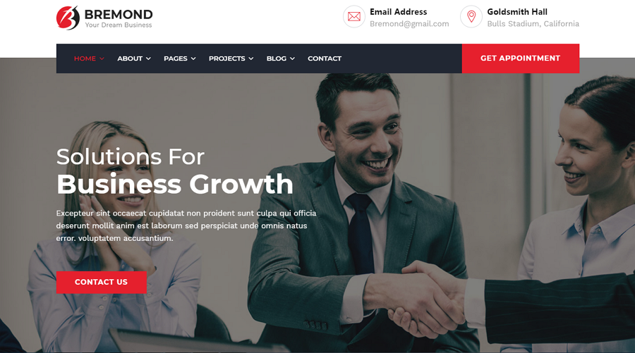 Bremond – professional HTML consulting website template