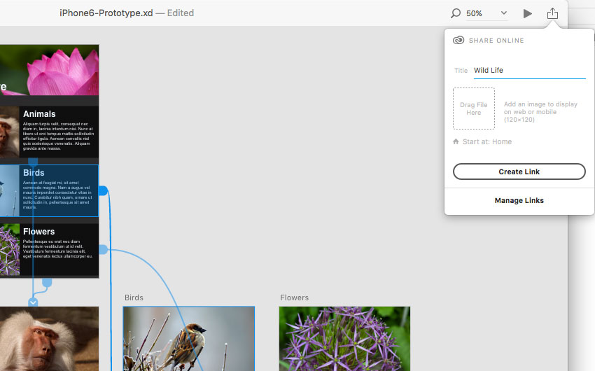 adobe-xd-tutorial-share-the-prototype-image