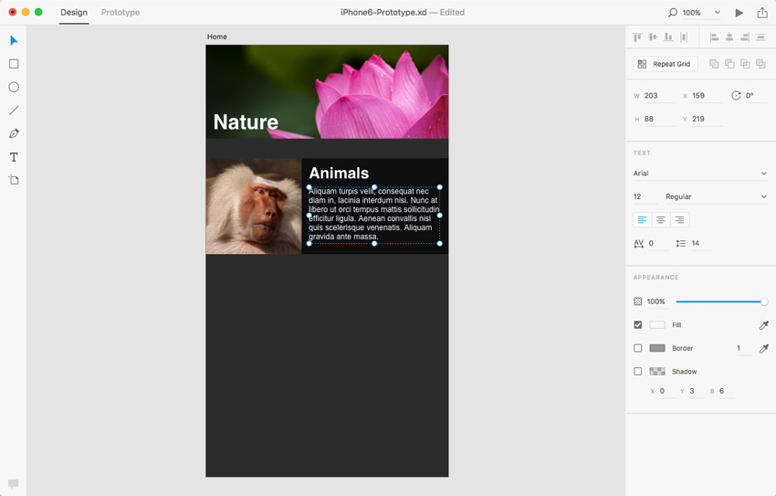 adobe-xd-tutorial-add-content-image