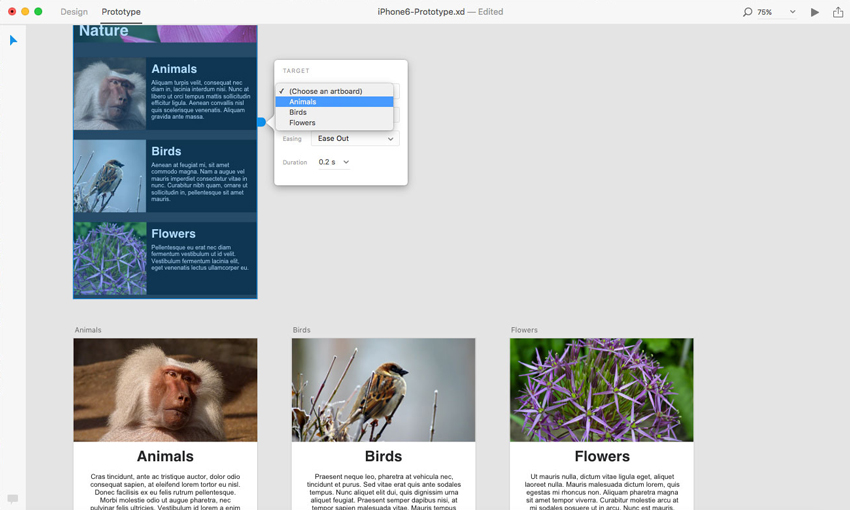 adobe-xd-tutorial-contact-between-pages-image