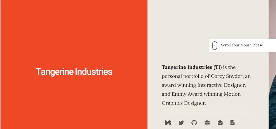 20 Best UI Designer Portfolio Examples for Your Inspiration
