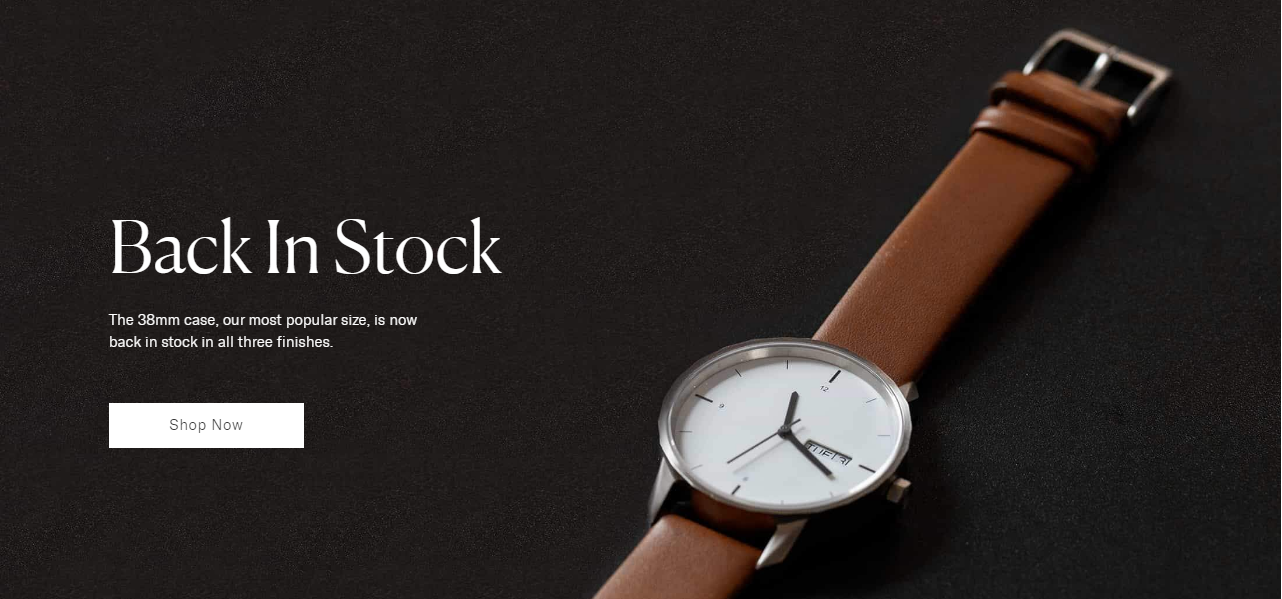 Thinker watches website design