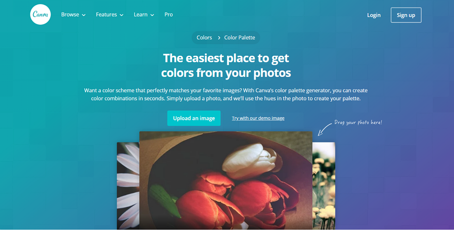 Canva Color Palette Generator Generador de paleta de colores Easy Image
