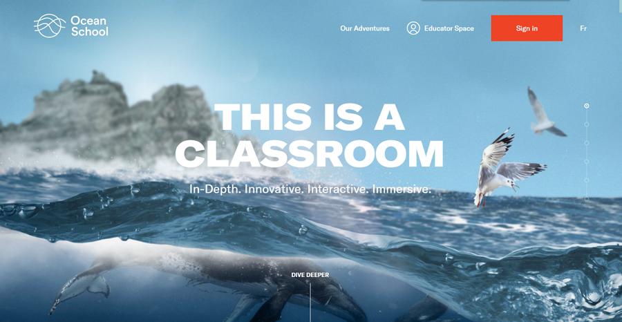 Ocean-school-image.png